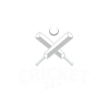 Fastest Cricket Live Line now available at Cricket247